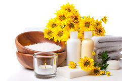 Products for spa, body care and hygiene. Composition of products for spa, body care and hygiene on a white background Royalty Free Stock Image