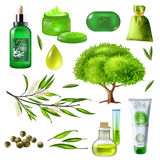 Products Of Tea Tree Set Royalty Free Stock Image