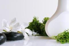 Produit de beauté avec l'algue d'isolement Images stock