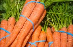 Produit frais : Raccords en caoutchouc oranges Image stock