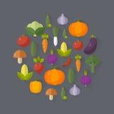 Produit-légumes frais de vegetables Concept de régime et d'aliment biologique Illustration de vecteur Photos libres de droits