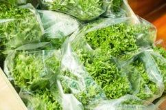 Produit organique de légumes Photos libres de droits