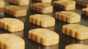 Produits alimentaires sur la chaîne de production Biscuits sur le convoyeur L'industrie alimentaire banque de vidéos