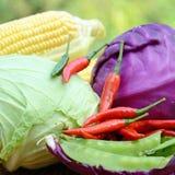 Produits biologiques frais. Images stock