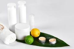Produits cosmétiques blancs et feuille verte sur le fond blanc Produits de beauté naturels pour le concept de marquage à chaud de Photo stock