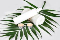 Produits cosmétiques blancs et feuille verte sur le fond blanc Produits de beauté naturels pour le concept de marquage à chaud de Image stock