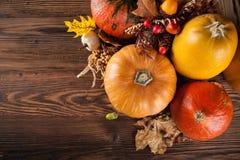 Produits d'agriculture d'automne sur le bois Images libres de droits