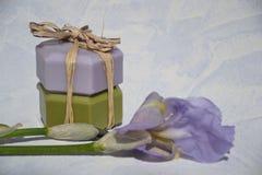 Produits de beauté .cosmetic Images stock