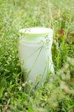 Produits de beauté et herbe. Images stock