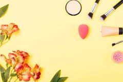 Produits de maquillage pour la peau lisse de visage photo stock
