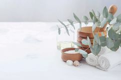 Produits de massage et de station thermale avec des branches d'eucalyptus images libres de droits