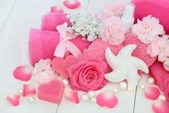 Produits de nettoyage de beauté Photos stock