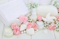 Produits de nettoyage de traitement de beauté de salle de bains Images stock