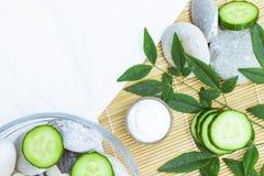 Produits de soin pour la peau naturels Ingrédients de vue supérieure sur le concept de table du meilleur toute la crème hydratant photographie stock libre de droits