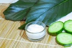 Produits de soin pour la peau naturels Ingrédients de vue sur le concept de table du meilleur toute la crème hydratante naturelle photos libres de droits
