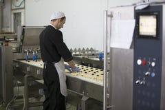 Produits industriels de boulangerie Image libre de droits