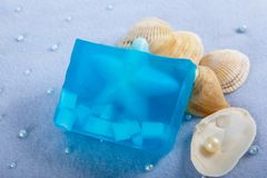 Produits naturels de soins de la peau de savon image libre de droits