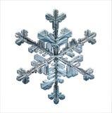 Produits naturels naturels de macro de flocon de neige Image libre de droits