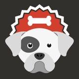 Produits pour des chiens Image libre de droits