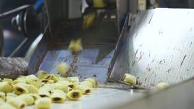 Produkci słodkiej kukurudzy przekąski w fabryce zbiory