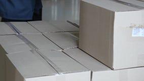 Produkcja żywności Piekarnia produkty na karmowej fabryki linii Piekarni produkcja Piec towary na konwejeru pasku piekarnia zdjęcie wideo
