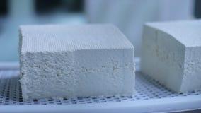 Produkcja chałupa sery w fabryce Serowa linia produkcyjna zbiory