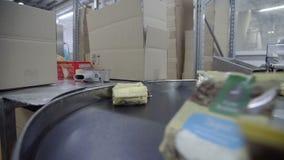 Produkcja cha?upa sery w fabryce Produkcja nabia?y Dojni produkty na automatyzującej linii produkcyjnej zbiory