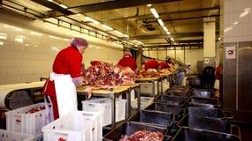Produkcja kiełbasy. Kiełbasiana fabryka. zdjęcia royalty free