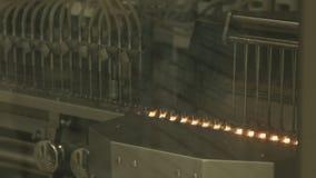 Produkcja leki rośliny farmaceutyczna, zdjęcie wideo