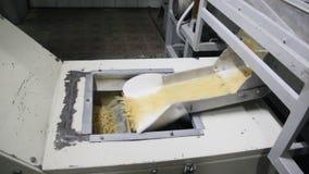 Produkcja makaron zdjęcie wideo
