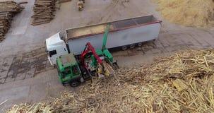 Produkcja paliwo brykietuje Proces produkcji paliwo brykietuje Przemysłowy wielkościowy drewniany rozdrabniacz zdjęcie wideo