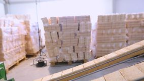 Produkcja paliwo brykietuje, produkcja paliwo brykietuje RUFA proces inscenizowania paliwo brykietuje zdjęcie wideo