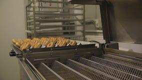 Produkcja przemysłowa donuts scena Piekarnia przemysł, cukierek fabryka, ciastka, bagels i donuts chlebowi, dużo zbiory wideo