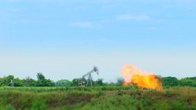 Produkcja Ropy Naftowej Po środku natury zdjęcie wideo