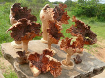 Produktów Afrykańscy artyści od korzeni drzewa. Afryka, Mozambi Fotografia Royalty Free