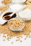produktów soj soja różnorodna Fotografia Stock
