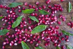 Produkt Autumn Season Pomegranates lizenzfreies stockfoto