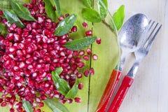 Produkt Autumn Season Pomegranates lizenzfreie abbildung