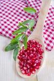 Produkt Autumn Season Pomegranates lizenzfreie stockfotografie