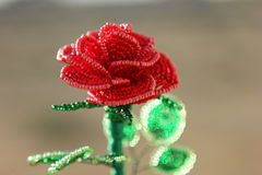 Produkt Blumen-Perle Stockfoto