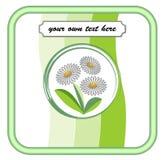 Produkt etykietka w zielonych kolorach z kwiecistym motywem Obraz Royalty Free