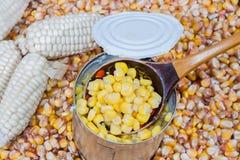 Produkt od kuchennego ogródu Zdjęcie Royalty Free