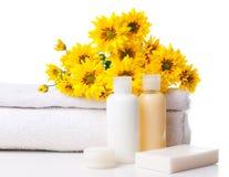 Produkte für Badekurort, Karosseriensorgfalt und Hygiene Stockbilder