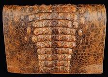 Produkte von einem Krokodil und von einer Schlange Stockfotografie