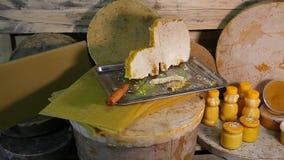 Produkte von Lebensunterhalt von Bienen Produkte von Imkerei stock footage