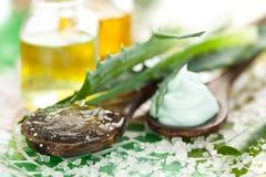 Produkter för aloehudomsorg Royaltyfri Fotografi