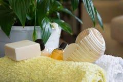 Produkter för Spa wellnessbehandling arkivfoto