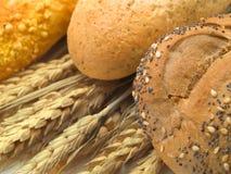 produkter för bageridesignbild Royaltyfri Foto