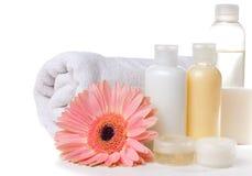 Produkter för brunnsort, huvuddelomsorg och hygien Fotografering för Bildbyråer