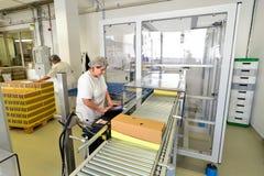 Produktion av brända mandlar i en fabrik för livsmedelsindustrin royaltyfri foto